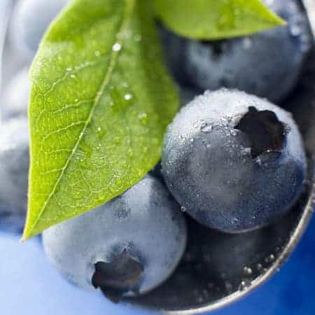 Blueberry-Fruit-e-Liquid-Cloud-Chemistry