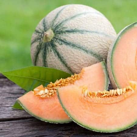 Cantaloupe-Fruit-e-Liquid-Cloud-Chemistry