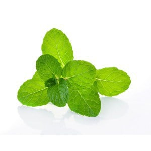Peppermint-e-Liquid-Cloud-Chemistry